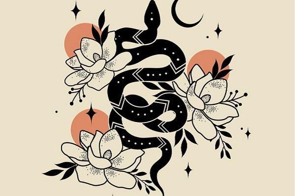 Nằm ngủ mơ thấy bắt rắn hổ mang