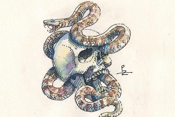 Nằm mơ thấy bắt rắn mang điềm báo như thế nào?