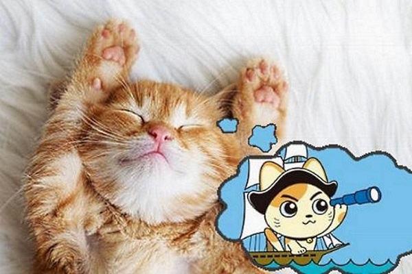 Nằm mơ thấy mèo chết đánh con gì | Giải mã giấc mơ mèo chết báo điềm tốt hay xấu?