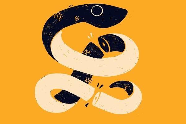 Nằm ngủ mơ thấy rắn vàng có ý nghĩa gì?