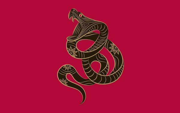Nằm mơ thấy rắn chết đánh con gì, số mấy dễ trúng lô đề?
