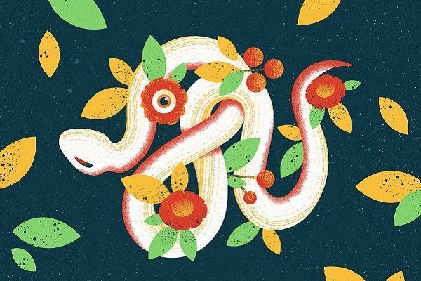 Giải mã nằm mơ thấy rắn đuổi theo mình đánh con gì và có những điềm báo hên xui ra sao?