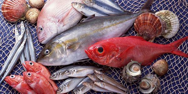 Nằm mơ thấy bắt cá chết báo điềm gì?