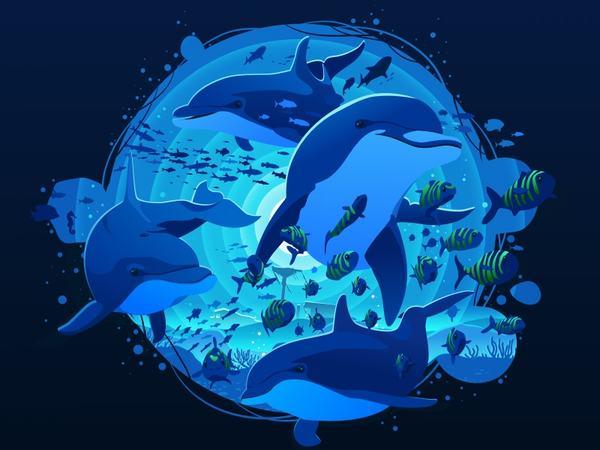 Nằm mơ thấy Cá Heo