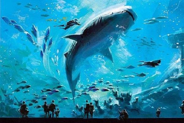 Nằm mơ thấy cá to lớn đánh con gì   Giải mã giấc mơ thấy cá lớn báo điềm gì?