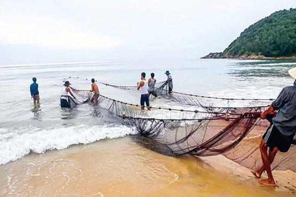 Nằm mơ thấy kéo lưới bắt cá báo điềm gì | Giải mã giấc mơ kéo lưới đánh cá toàn tập