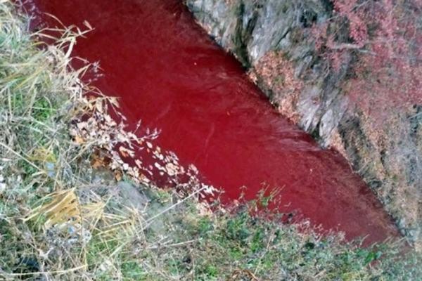 Nằm mơ thấy máu chảy rất nhiều, chảy thành dòng