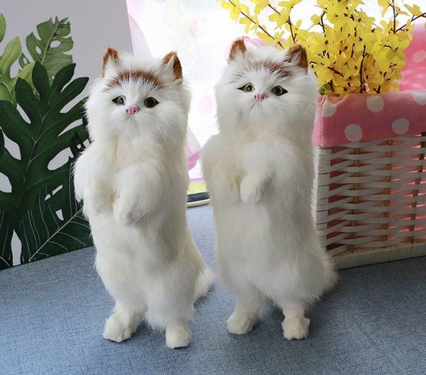 Nằm mơ thấy 2 con mèo con là hên hay xui?