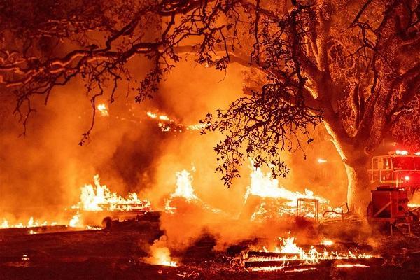 Nằm Mơ Thấy Lửa Cháy Đánh Con Gì | Giải Mã Mơ Thấy Cháy Nhà, Cháy Trong Bếp, Cháy Quần Áo...