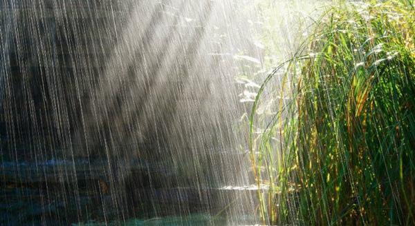 Nằm mơ thấy trời mưa lớn, mưa giông tầm tã có sấm sét