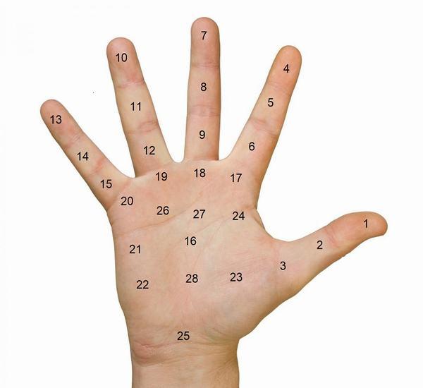 Xem bói nốt ruồi ở lòng bàn tay theo từng vị trí